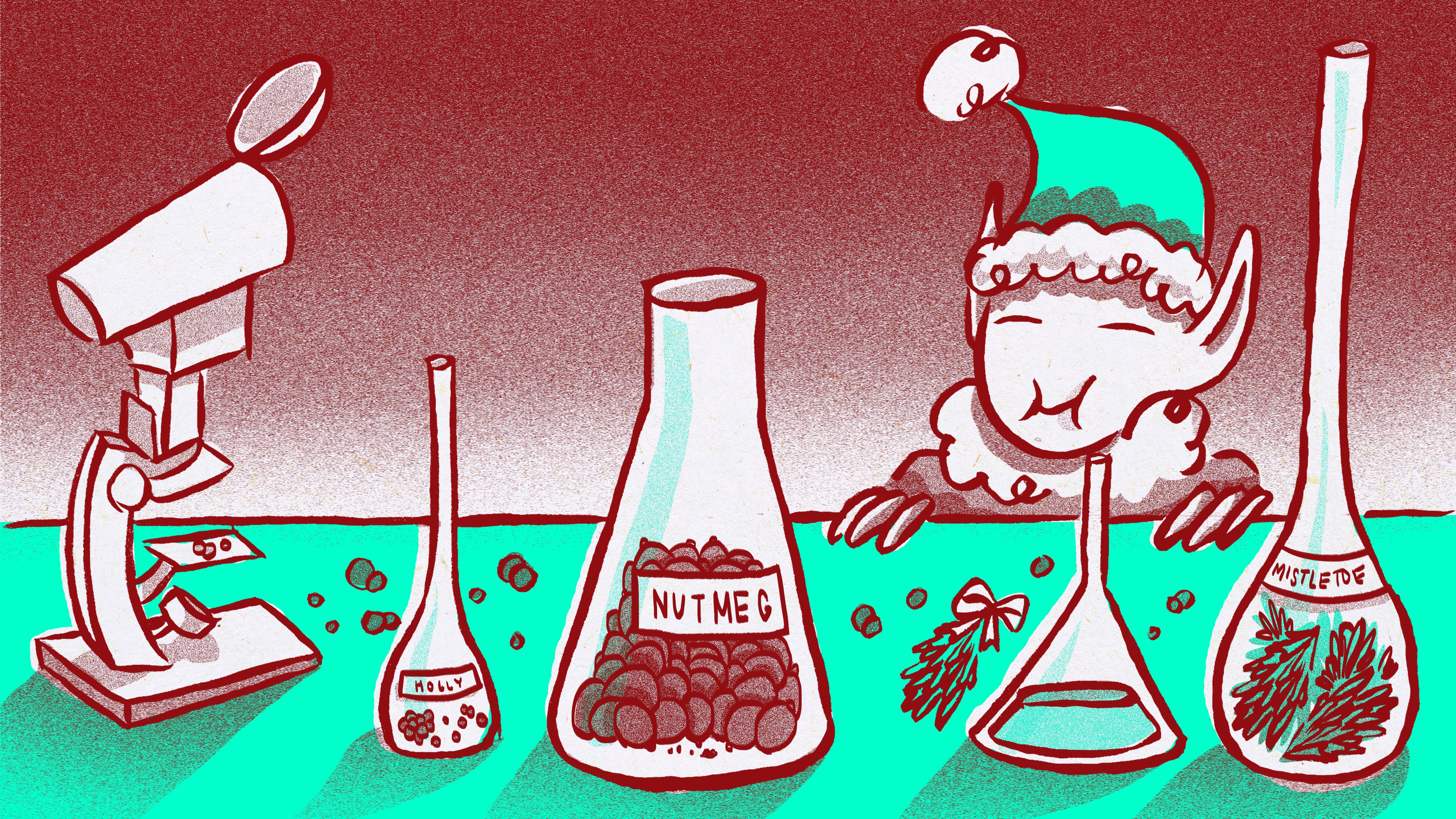 The Healing Power Of Christmas The Secret Benefits Of Mistletoe