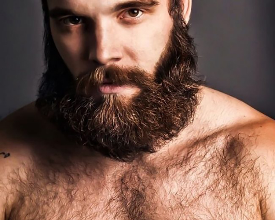 beard styles how to grow a bushy beard