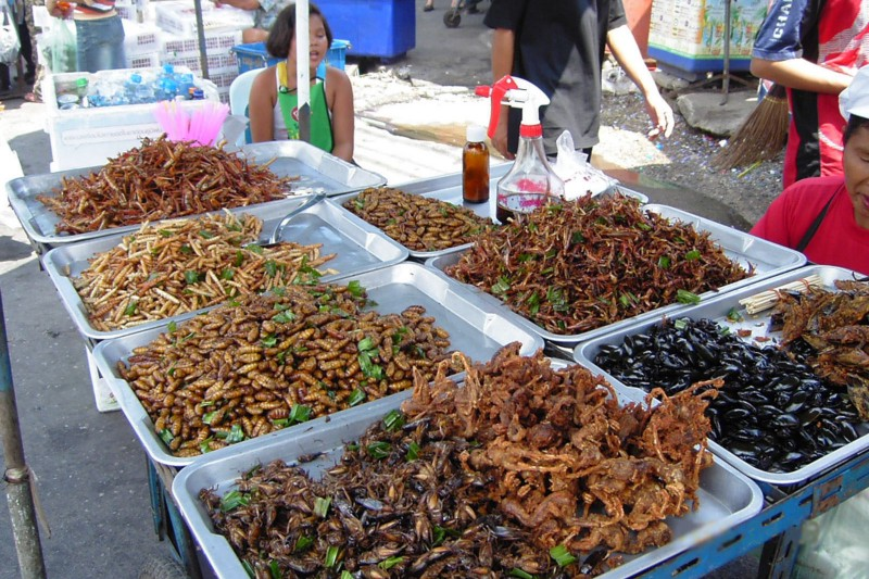 Insect food stall in Bangkok, Thailand.