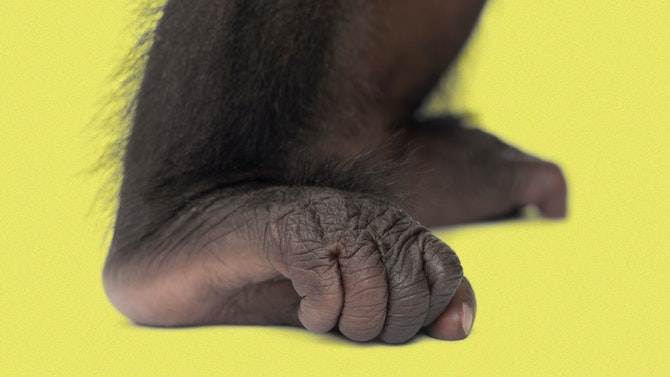 Man_Feet