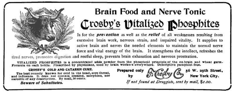 'Primary Education,' 1905