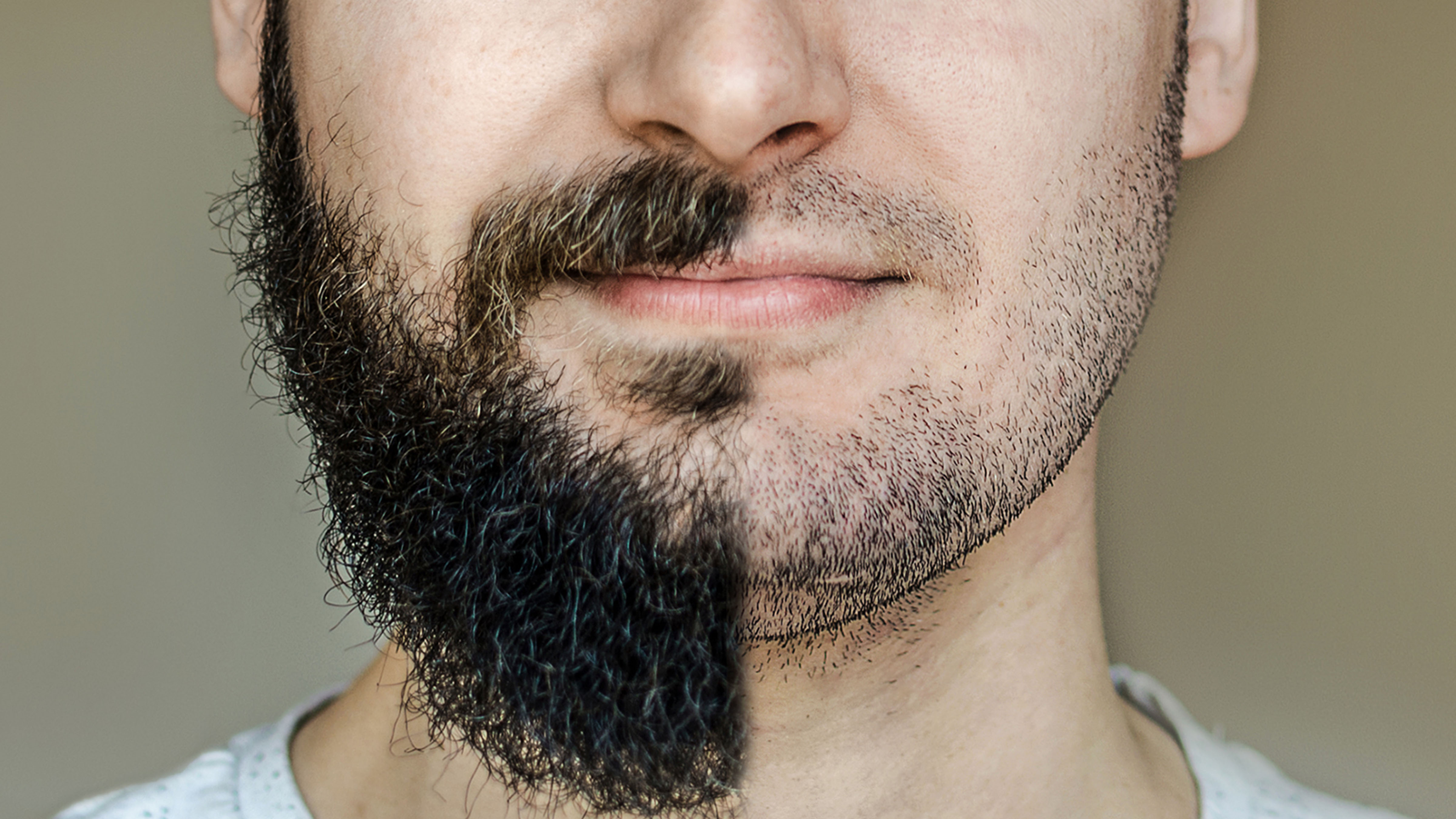 Peachy People Are Now Concerned That Youre Not Hot Without Your Beard Schematic Wiring Diagrams Amerangerunnerswayorg