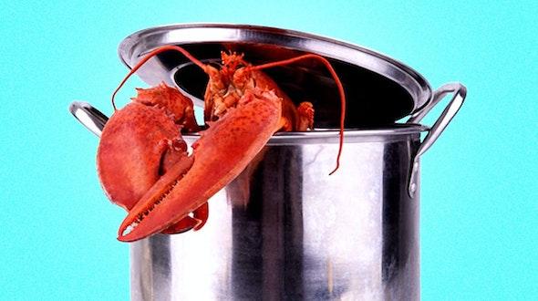 boil_lobster