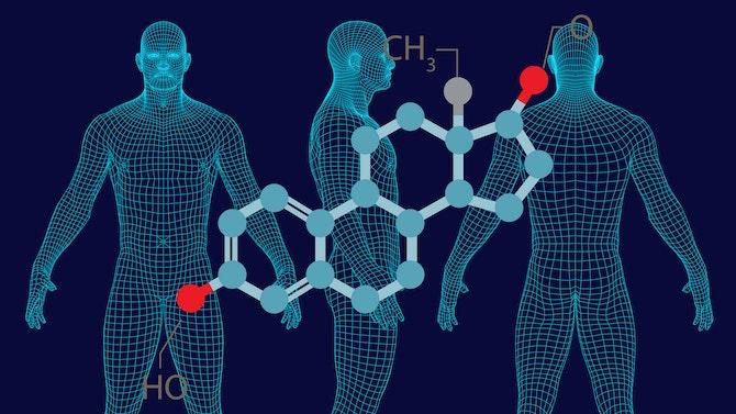 estrogen-1