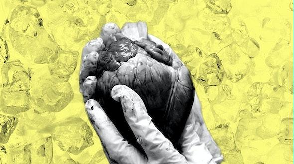 organ_donor