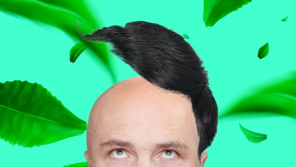 bald_gracefully