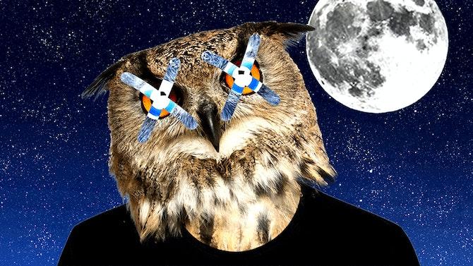 night_owl