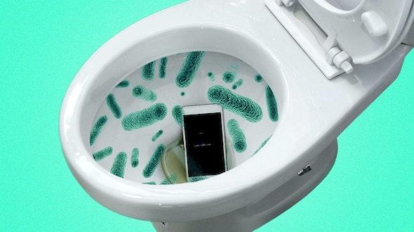 bacteria_phone_toilet