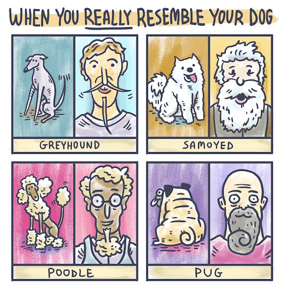 doggy-hair-style